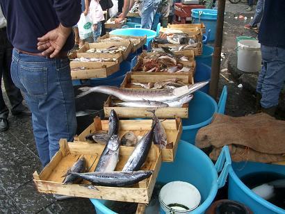 一周年記念!イタリアの市場その3 カターニャ魚介編_b0107003_18142952.jpg
