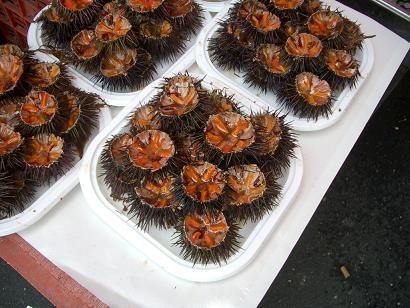 一周年記念!イタリアの市場その3 カターニャ魚介編_b0107003_1816936.jpg