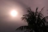 [ダイビング]ああ曇り空..._a0043520_22453426.jpg