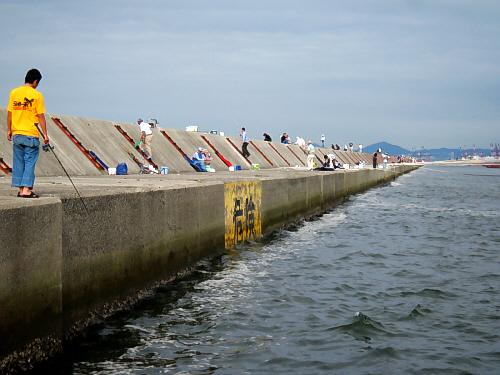 一文字と呼ばれるだけあって、一直線に長ーく伸びた防波堤。二段になっていて、上の部分に上がりやすく等間隔に梯子がかけられています。神戸方面を写した一枚。