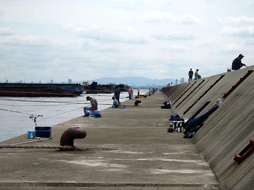 こちらは反対向き、大阪方面を写した一枚。みなうなだれているように見えるほど、どの釣竿にも獲物がかかっている様子は見受けられません。