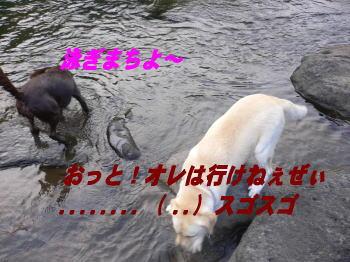 d0013645_16461367.jpg