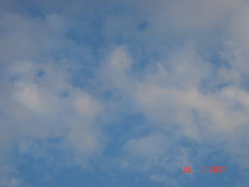 f0134859_85993.jpg