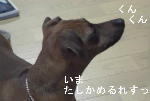 f0123589_19545762.jpg