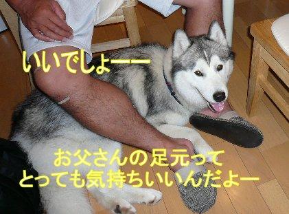 f0112407_2341020.jpg
