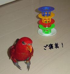 d0042518_21514226.jpg