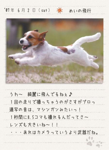 b0040323_8562097.jpg