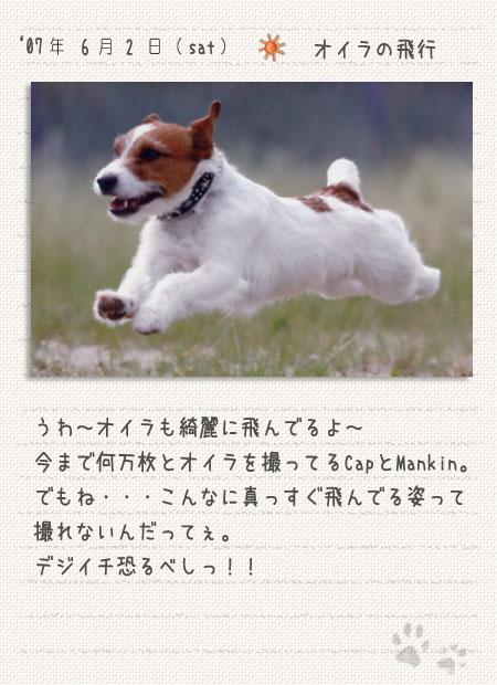 b0040323_8564012.jpg