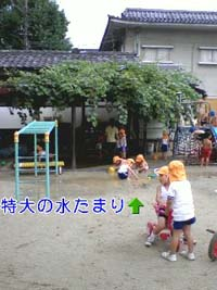 e0108055_17423270.jpg