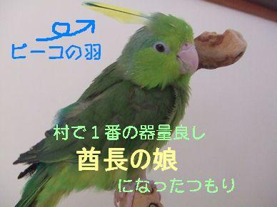 b0082757_22531978.jpg