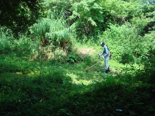 おにぎり広場周辺草刈り・・・定例活動日_c0108460_17205249.jpg