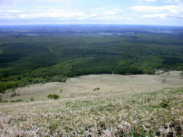 西別岳:花の山_e0100772_2224071.jpg