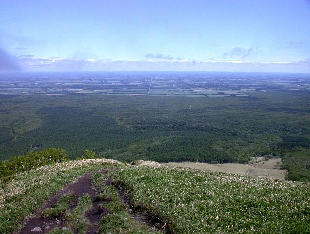 西別岳:花の山_e0100772_2228133.jpg