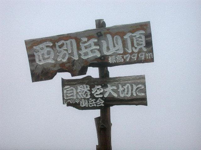 西別岳:花の山_e0100772_22345431.jpg
