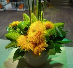 Sun  Flower_d0104091_20355556.jpg