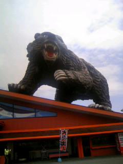 北海道祭り!<熊出没編>_e0031798_23424865.jpg