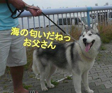 f0112407_1432845.jpg