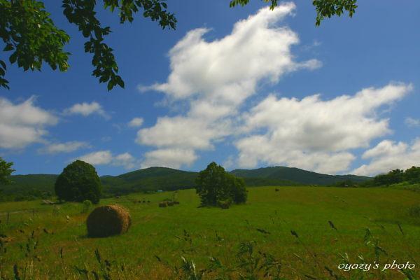 山は山なりに_a0071514_2227815.jpg