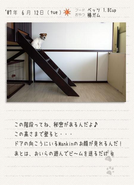 b0040323_16462577.jpg