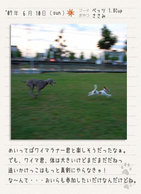 b0040323_16504291.jpg