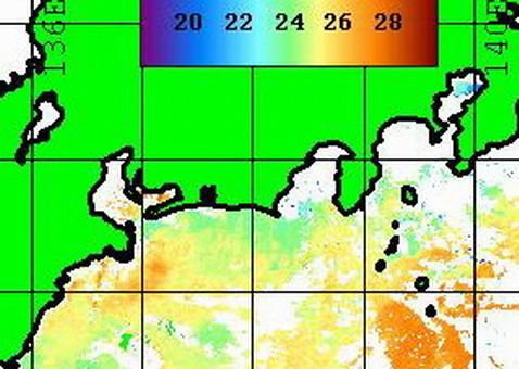 7月3日のNOAAに水温の真実が・・・        [カジキ・マグロトローリング]_f0009039_1615534.jpg