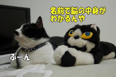 b0041182_21201341.jpg