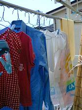 とれる粉末くんで お洗濯に挑戦~♪_e0123286_1453523.jpg