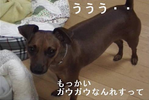 f0123589_1804321.jpg