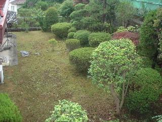 草刈真っ青  (δ。δゞポリポリ_f0031037_1733753.jpg