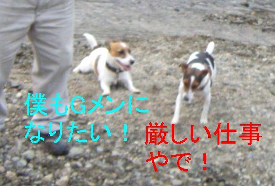 f0053952_13114392.jpg