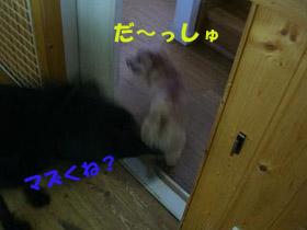 d0043478_23242491.jpg