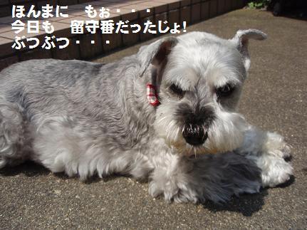c0098501_18344610.jpg