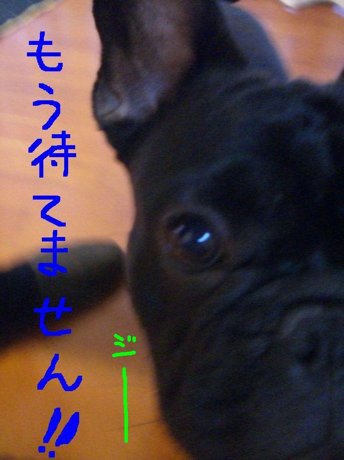 c0113109_20311496.jpg