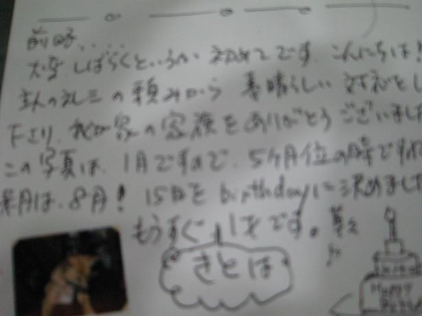 b0071310_1450720.jpg