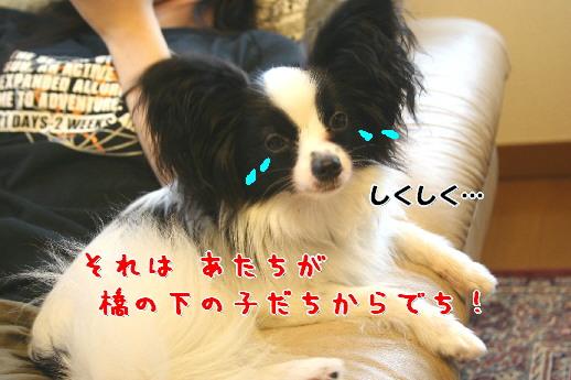 d0013149_0104588.jpg