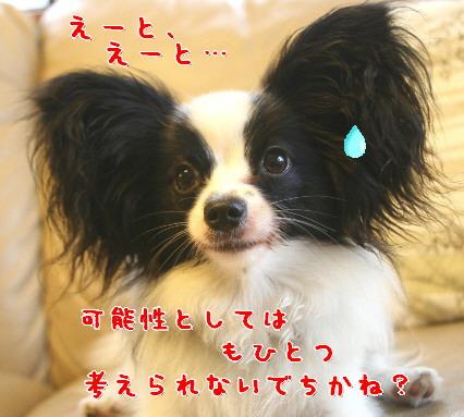 d0013149_053181.jpg