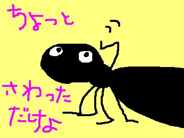 おわ!痛いっ ~ant attack~_c0105183_0435668.jpg