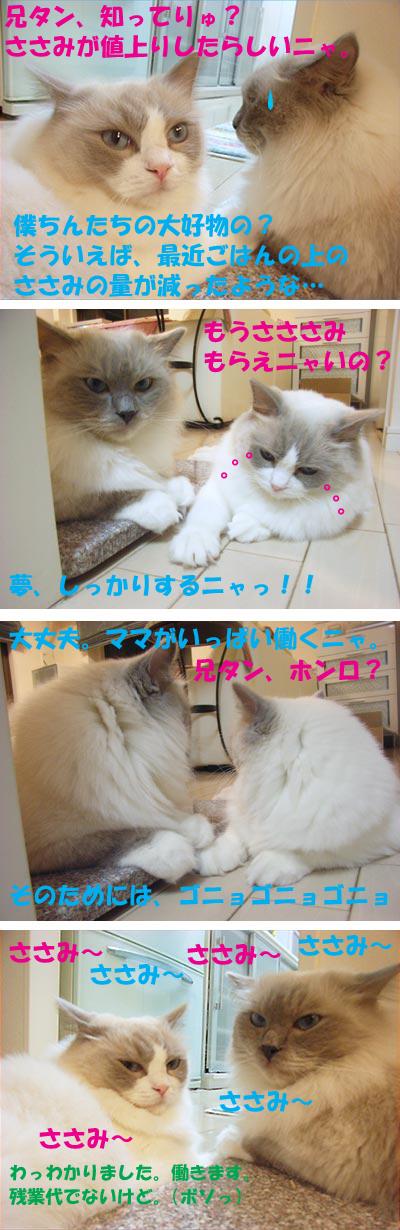 2007年7月6日(金)_f0014893_13484368.jpg