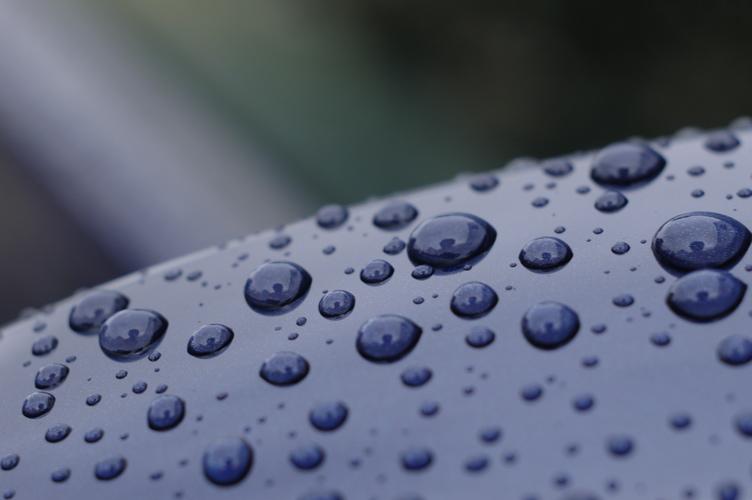 雨上がり_f0042194_8445736.jpg