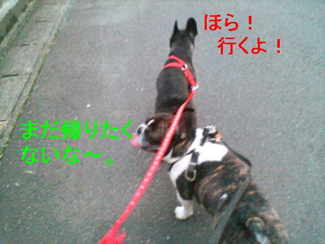 b0076733_14124364.jpg