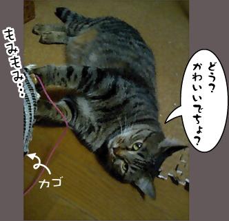 c0012445_1041425.jpg