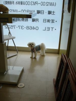 今日の病院での親子〜_b0001465_1545137.jpg