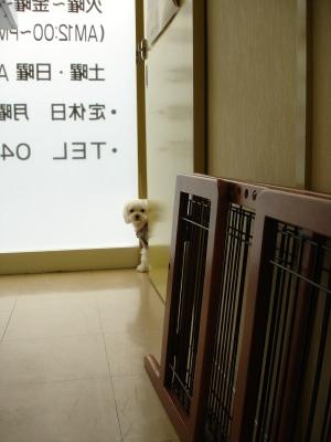 今日の病院での親子〜_b0001465_1549723.jpg