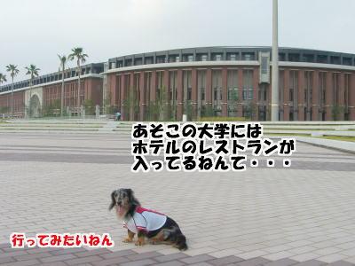 d0020869_2012766.jpg