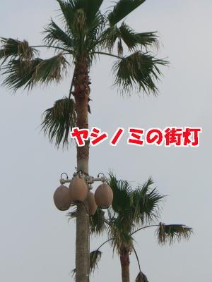 d0020869_2042691.jpg