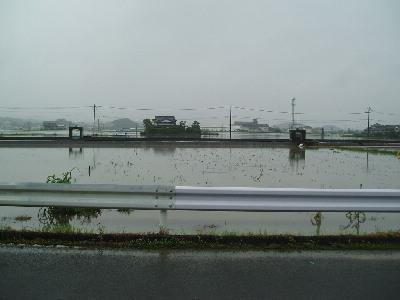 集中豪雨_a0077071_1764112.jpg