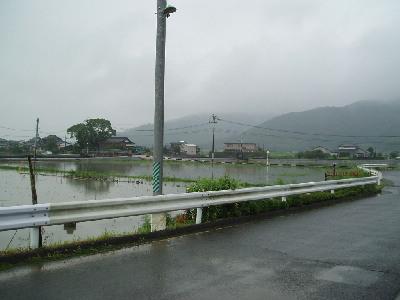 集中豪雨_a0077071_1771229.jpg