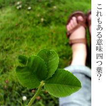 f0084643_20495898.jpg
