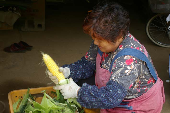 下総台地の実家の畑で極上のトウモロコシあさどり!(7・6)_c0014967_13511533.jpg