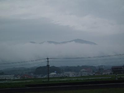 今日も雨_a0077071_17394251.jpg